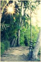 Sun | Cilacap